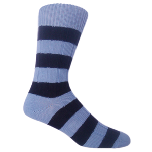 Sky and Navy Socks