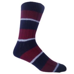 Royal Air Force Socks